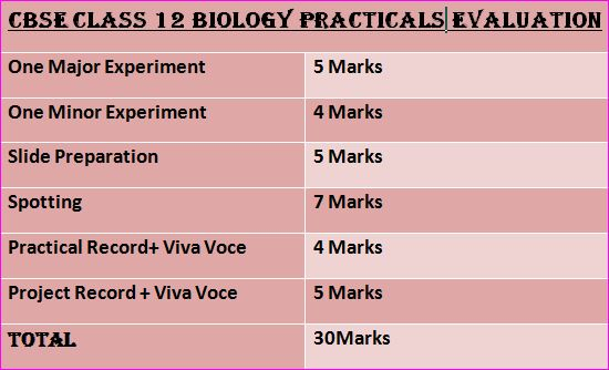 CBSE Class 12 Biology Syllabus- Practicals Evaluation